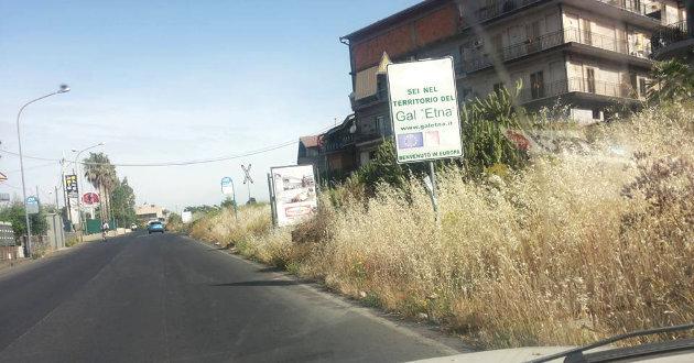 erbacce-di-benvenuto-a-biancavilla2