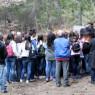 """120 ettari di boschi da regalare <br>Il Consiglio dice """"no"""" a Glorioso"""