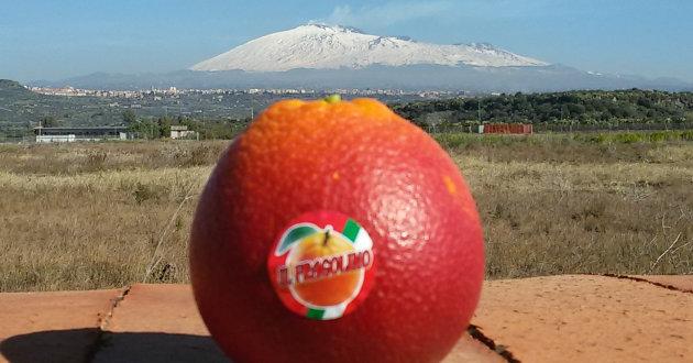 arancia-fragolina-etna