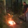 Un gatto dato a fuoco in via Vicenza, intervento dei volontari Pcb e Gepa